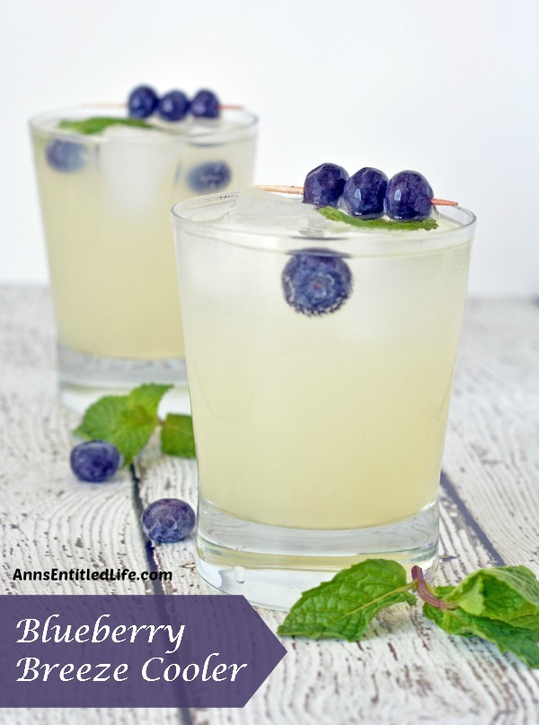 Blueberry Breeze Cooler. Quench your thirst with this adult lemonade cocktail.  A deliciously refreshing adult libation, the Blueberry Breeze Cooler goes down smoothly.