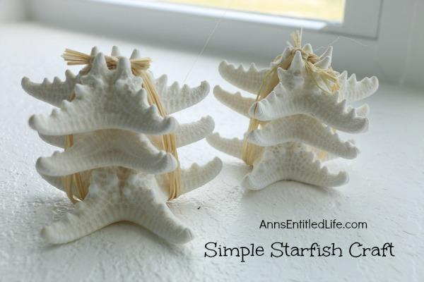 Simple Starfish Craft