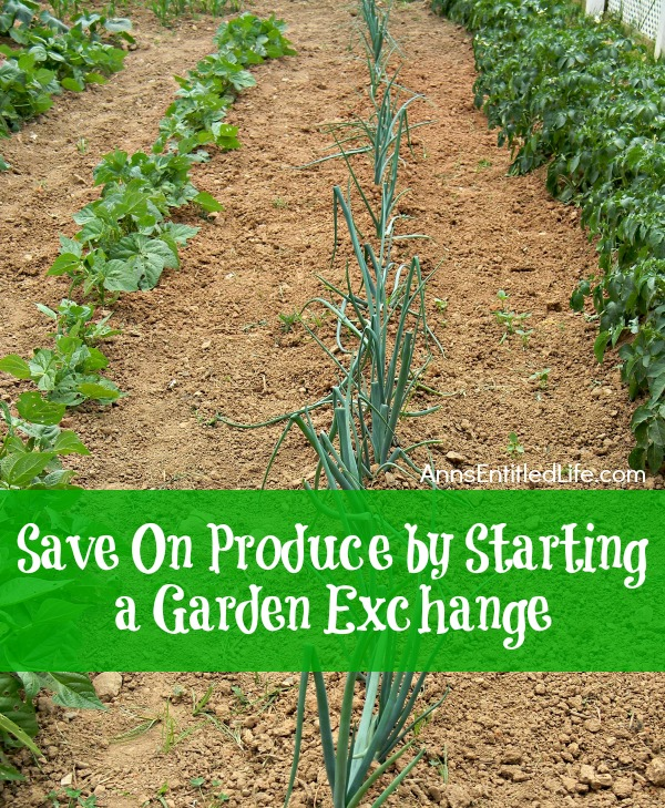 Save On Produce by Starting a Garden Exchange; tips and advice on how to start and participate in a garden exchange. Spending too much on produce? Or perhaps your garden yielded an overabundance of a particular fruit or vegetable and you are tired of eating tomatoes every night for dinner? Instead of leaving a bag of zucchini on the neighbor's doorstep and running, get creative and start a garden exchange!