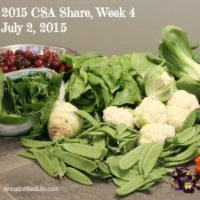 2015 CSA Share Week 4