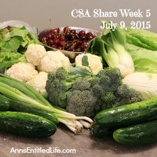 2015 CSA Share Week 5
