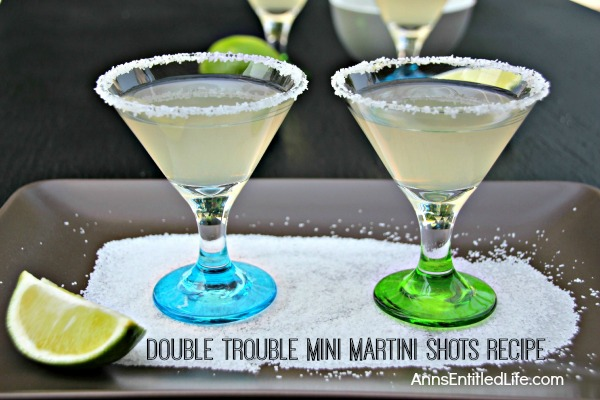 Double Trouble Mini Martini Shots Recipe. Reinvent the classic martini with these pint-sized tequila martinis in mini glasses. Double trouble at your next party!