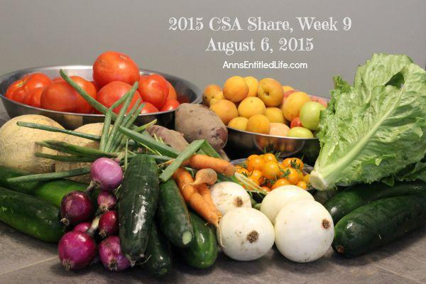 2015 CSA Share Week 9