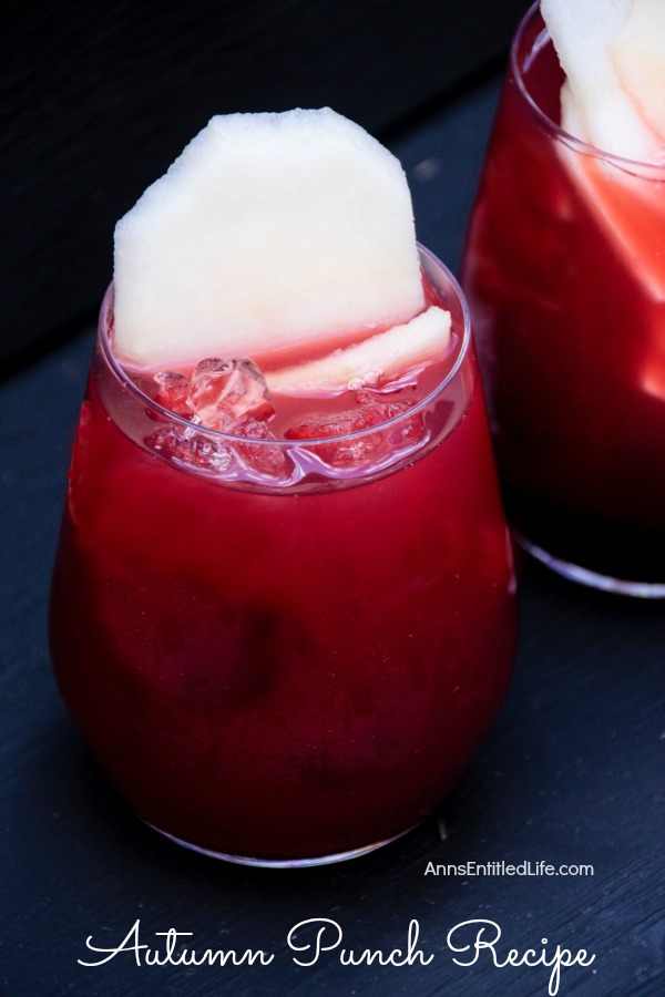 This is a great fall punch made with hints of some of great autumn flavors. The subtle taste of cherry, cranberry and fresh picked McIntosh apples makes for a wonderful Autumn Punch; a great drink when spending time relaxing in front of a fireplace or gathered outside around the fire pit. So raise a glass of Autumn Punch to the season!