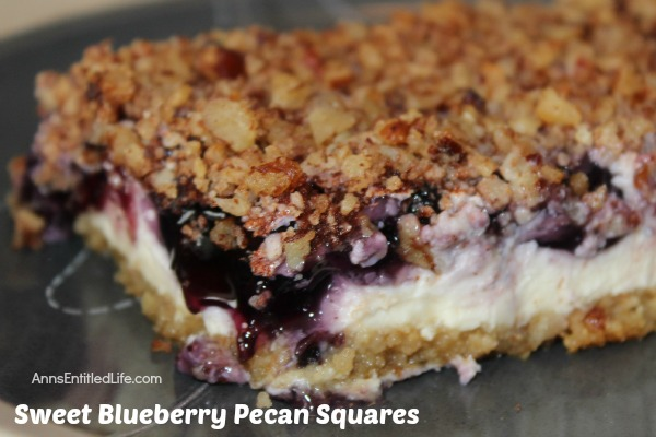 Sweet Blueberry Pecan Squares. These Sweet Blueberry Pecan Squares have a sweet, creamy filling layer, graham cracker crust and delicious pecan topping. Simple to make, these Sweet Blueberry Pecan Squares are a perfect colorful, and delicious, dessert for any occasion.