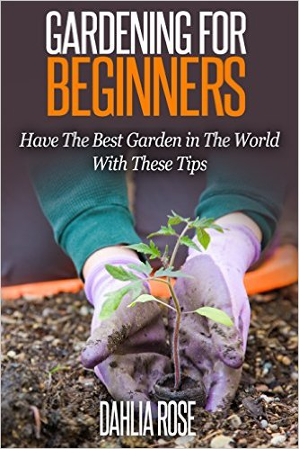 Gardening For Beginners: Have The Best Garden in The World With These Tips