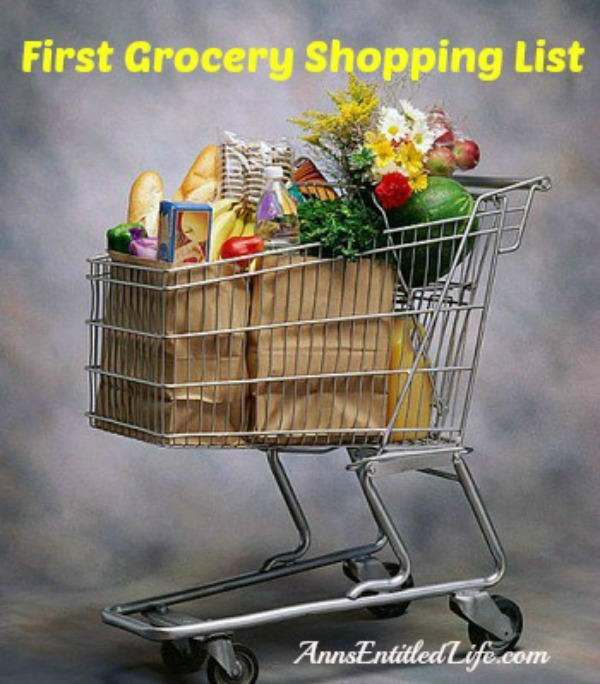 First Grocery Shopping List