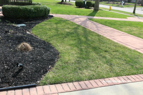 How to Repair Grass Damaged by Snow Mold. How to fix the snow mold damage to your lawn left at the end of winter. Snow mold or snow rot treatment and snow mold repair. Snow mold is a fungus that can severely damage your lawn. This easy repair tip can help repair the damage to your lawn cause by snow mold.