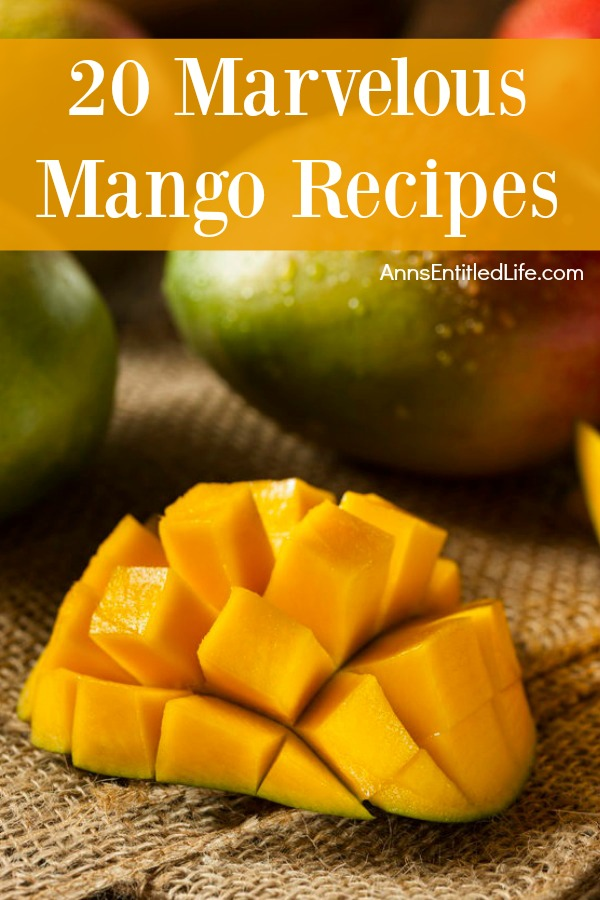 20 Marvelous Mango Recipes. From healthy smoothies to delicious salsa, from tasty cocktails to decadent cakes; the mango is a key ingredient in many dinner, side dish and dessert recipes. Try one of these 20 Marvelous Mango Recipes today!