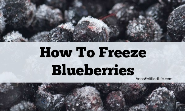 How To Freeze Blueberries. Whether store bought or picked fresh in your backyard, summer blueberries are a great source of antioxidants! To preserve these delicious berries for use when they are not in season,  follow  these easy How To Freeze Blueberries instructions!
