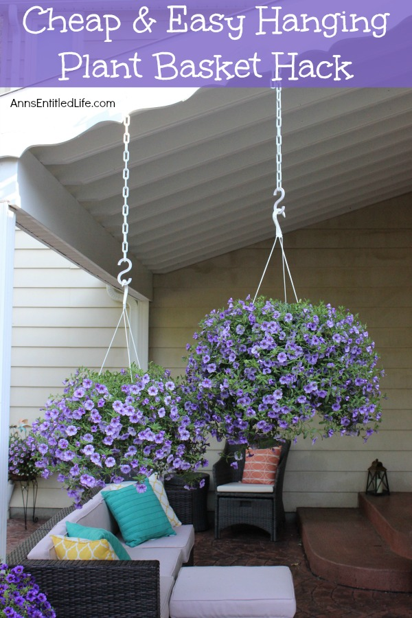 Cheap and Easy Hanging Plant Basket Hack. This unbelievably easy, inexpensive, hanging plant basket hack will change the way you look at your outdoor plants and decor. Easy watering access and the ability to stagger your plants for optimal visual enjoyment are just two of the benefits. This no rust, no fuss hack is so simple, you will wonder why you had not tried it before!
