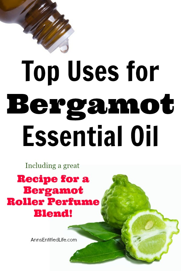 Top Uses for Bergamot Essential Oil. Bergamot has a wonderful and distinct citrus scent. Bergamot may best be described as uplifting, assuring and a restoring oil.  Bergamot blends very well with Ylang Ylang, Lavender, Patchouli, and White Fir. Here are the Here are some of the top uses of Bergamot Essential Oil, along with a wonderful roller ball perfume blend formula for you to try!