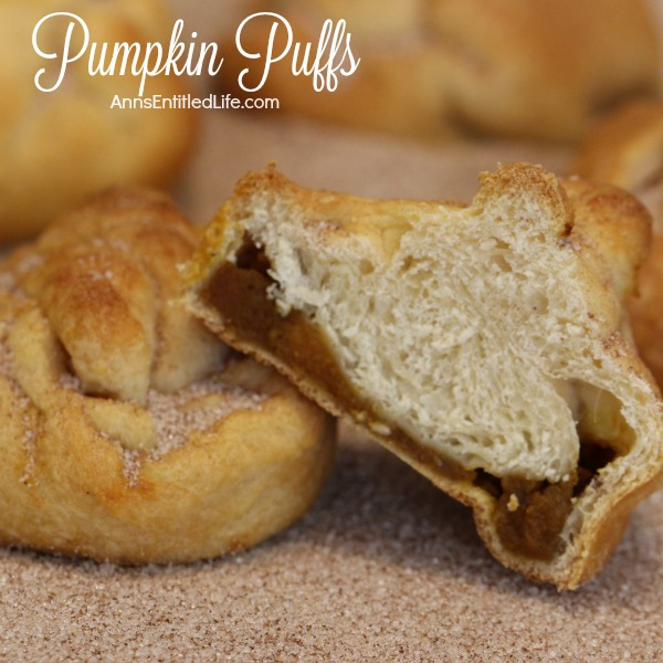 Pumpkin Puffs Recipe. These easy to make Pumpkin Puffs are soooo good! A wonderful side dish for lunch or dinner, a tasty dessert or quick breakfast, this Pumpkin Puffs Recipe is a quick seasonal treat your whole family will enjoy.