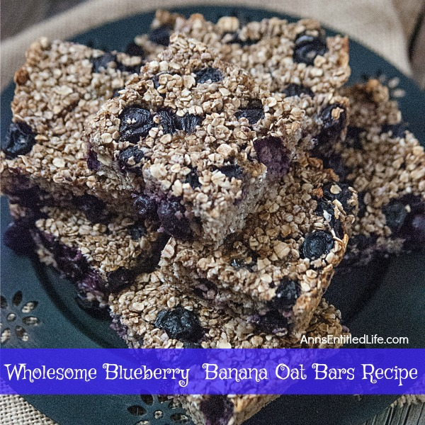 Wholesome Blueberry Banana Oat Bars Recipe. Try this easy to make Wholesome Blueberry Banana Oat Bars Recipe today! It makes for a great snack, on the go breakfast, or a delicious addition to a lunchbox meal.