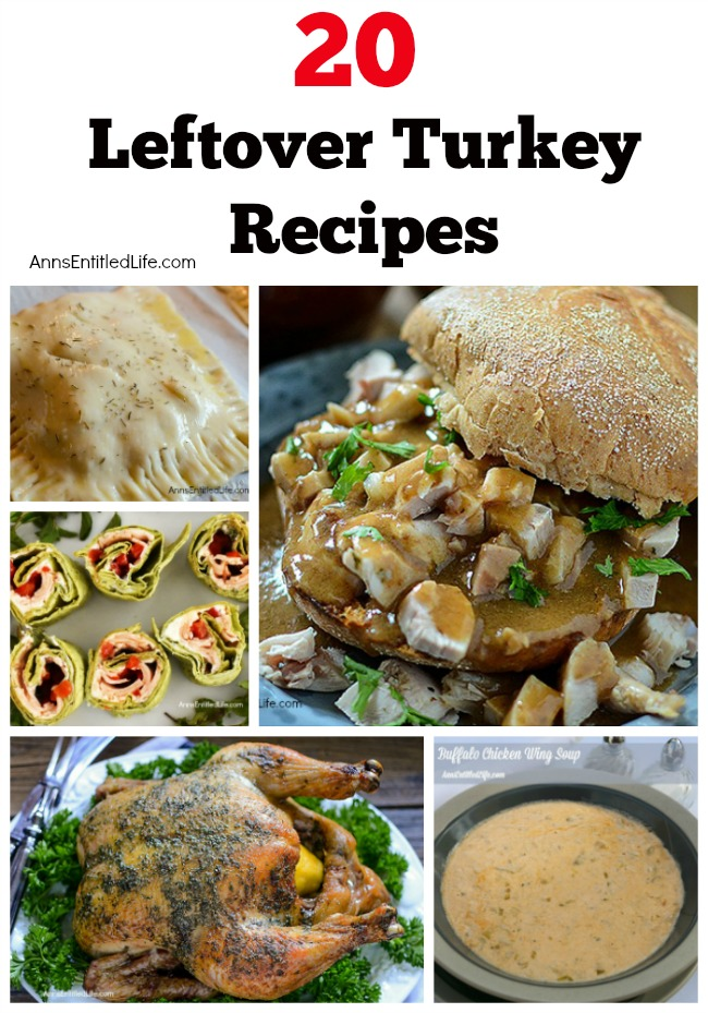 20 Turkey Leftovers Recipes. Turkey leftovers abound! Get these family friendly, kid friendly, lunch, dinner, and freezer turkey recipes your entire family will enjoy.