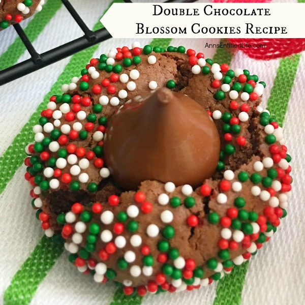 Double Chocolate Blossom Cookies Recipe. Twice the chocolaty goodness in these Double Chocolate Blossom Cookies! Update your holiday cookie recipes to include these easy to make, delicious, chocolate blossom cookies. Yum!