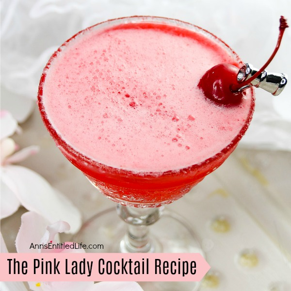 The Pink Lady Cocktail Recipe. The Pink Lady is a classic gin cocktail that gets its pink coloring from grenadine. The original girls-night-out cocktail!