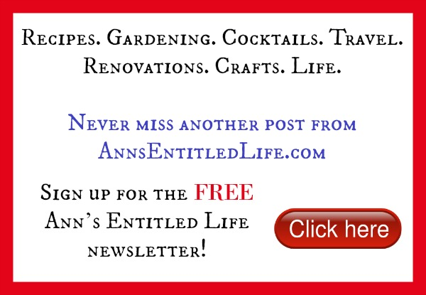 FREE Newsletter Sign Up For Ann's Entitled Life