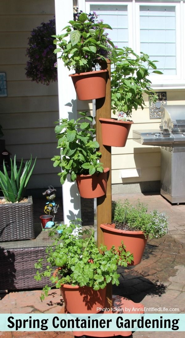 Spring Container Vegetable Gardening. Have a vegetable garden? Have you tried growing vegetables in pots? This year I went to all container vegetable gardening. This how I set-up my spring container vegetable garden in containers.