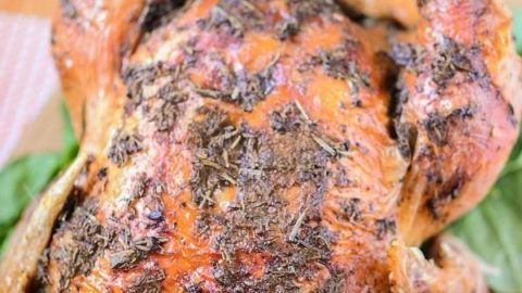 Easy Oven Roasted Turkey Recipe