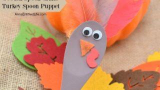 Wooden Spoon Craft: Turkey Spoon Puppet