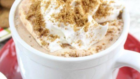 Gingersnap Hot Cocoa Recipe