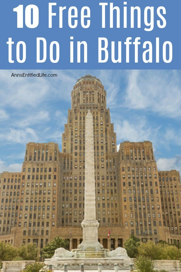 10 Free Things to Do in Buffalo, New York. There is a lot to see and in Buffalo, New York that will not cost your family any money. Whether you live in Buffalo and want something cheap to do on a weekend, are visiting for the first, or fiftieth time, there is always a great new interesting place to explore.
