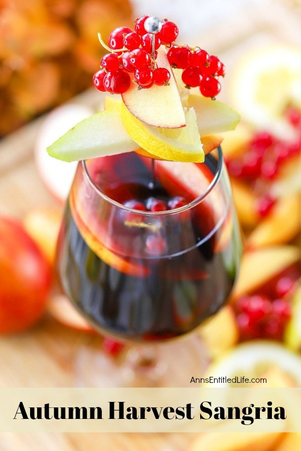 overhead shot of a glass of autumn sangria garnished with red current, apples, pears on a sliver pic, on top of a bed of cut fall fruit