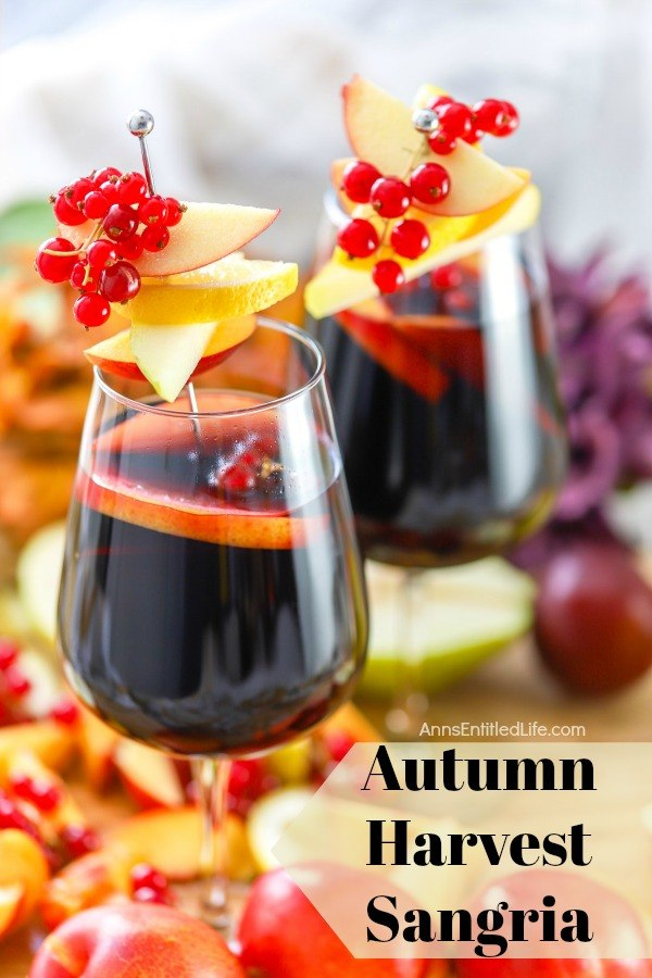 two glasses of autumn sangria garnished with red current, apples, pears on a sliver pic, on top of a bed of cut fall fruit