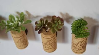 How to Make Fake Succulent Magnets Home Decor Tutorial