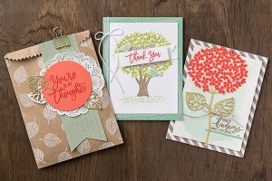 Thoughtful Branches Bundle Limited Edition Ann's PaperWorks| Ann Lewis| Stampin' Up! (Aus) online store 24/7