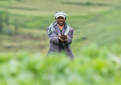 Soil restoration in Ethiopia: Not so dirt cheap