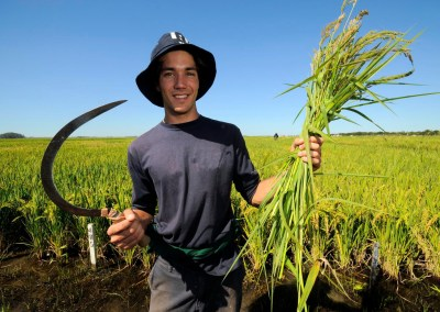 Pioneering a big data revolution in agriculture