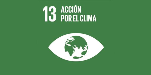 Objetivo #13: Acción por el clima