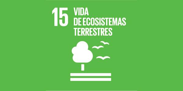 Objetivo #15: Vida de ecosistemas terrestres