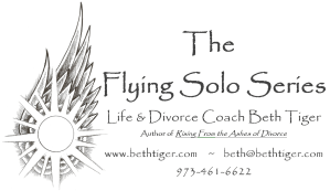 flying solo Beth Tiger logo