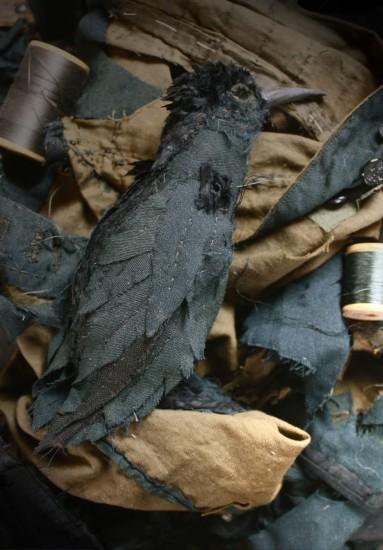 darkbird2