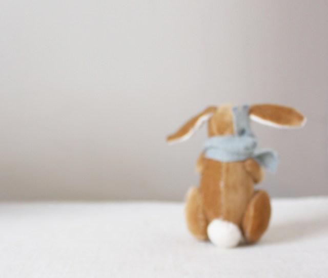 so_long_bunny