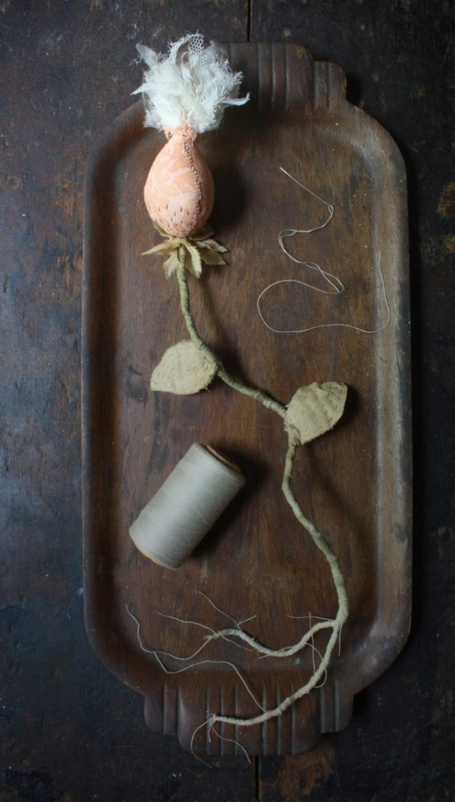 fortuny seed pod