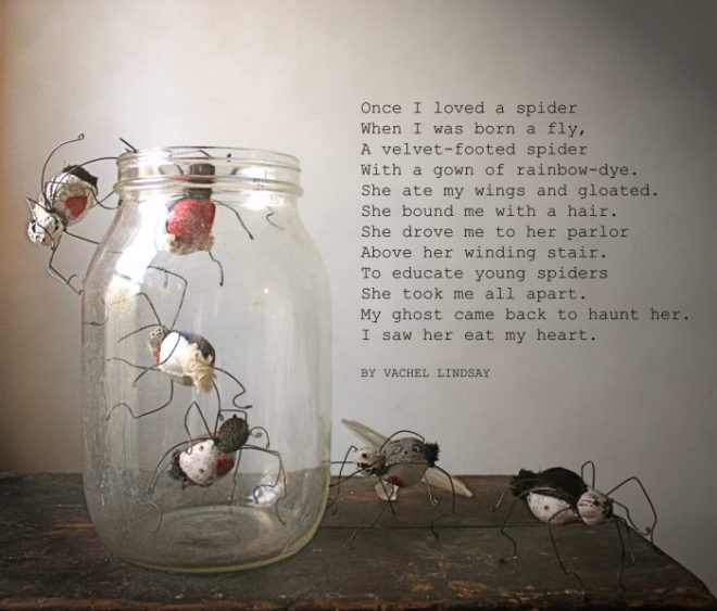 once I loved a spider