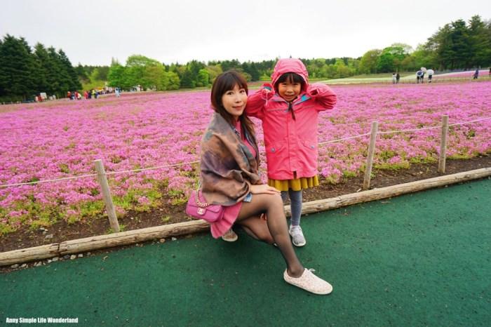 【日本】河口湖景點 看富士山景點 ♥ 富士芝櫻季(自駕/交通/攻略)