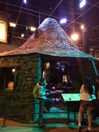 """Hagrid's hut. Next to it was a wall of the """"actors"""" used to play Hagrid's dog Fang, as well as Crookshanks, Mrs. Norris, and Hedwig."""