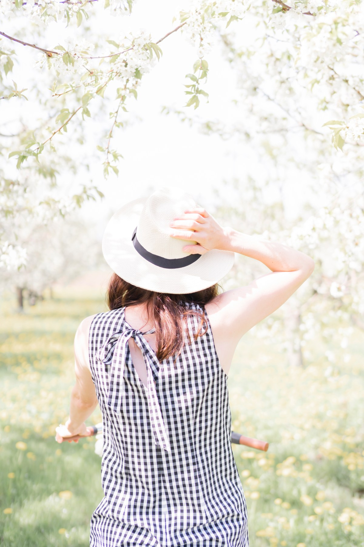 Gingham & Apple Blossoms