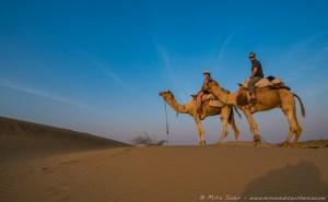 Camel Safari in Sand Dunes, Jaisalmer, Rajasthan, India