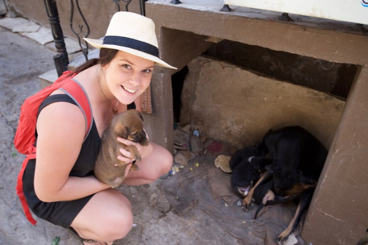 Having a cuddle with some puppies we found in Udaipur.