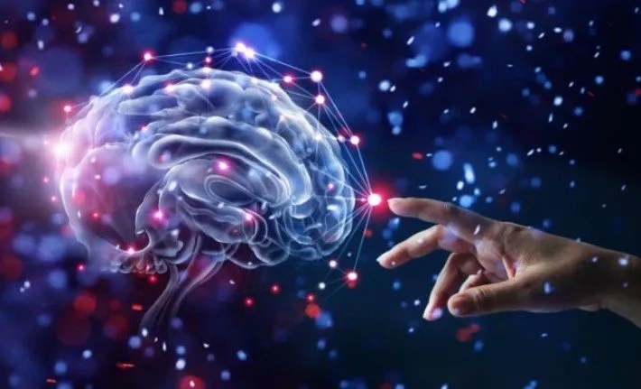Spiritualité du cerveau