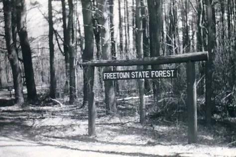 Forêt d'État de Freetown: