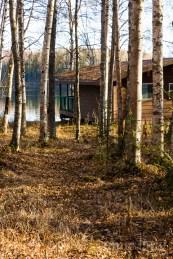 genevieves-13th-birthday-at-nancy-lake-1236
