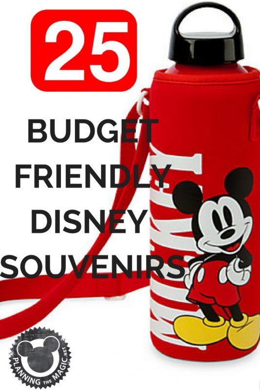 Save Money Disney Souvenirs