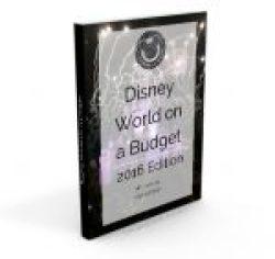 Disney Budget eBook